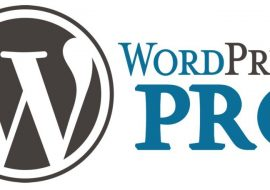 Realiser soi meme un site web ou un blog avec WordPress